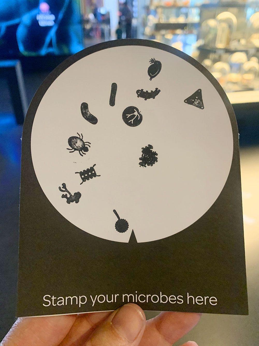 Rincones secretos de Amsterdam - Colección de microorganismos del Micropia