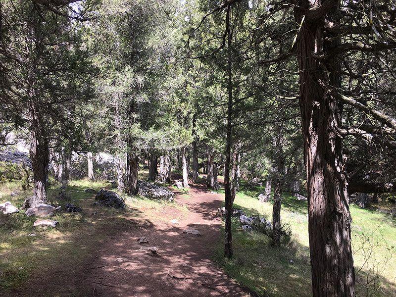 Monumento Natural de La Fuentona, Muriel de la Fuente - Soria - Camino de la Cascada