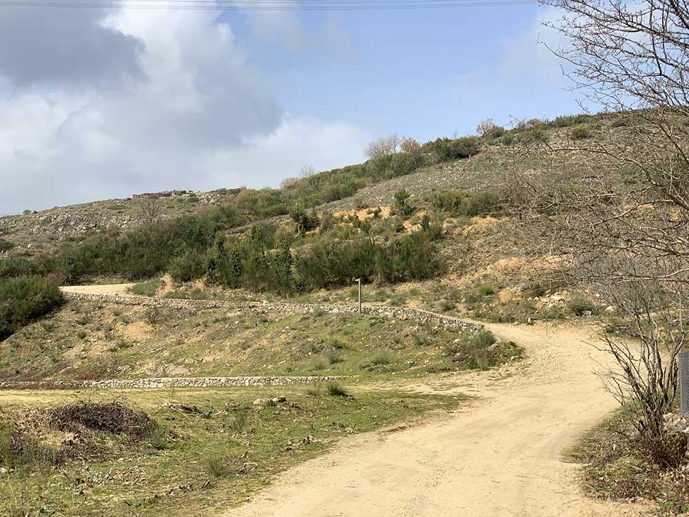 Ruta de senderismo a la acebeda de Robregordo
