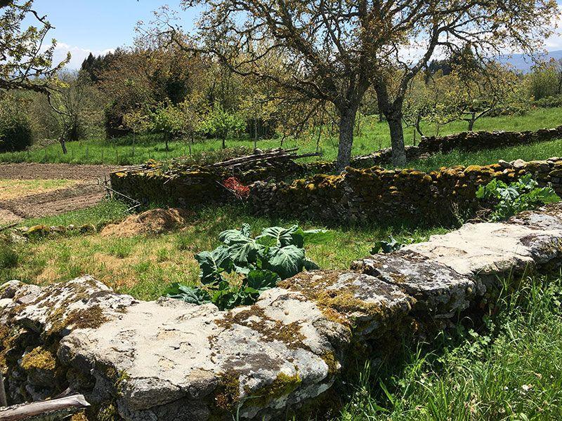 Ruta de senderismo dos sequeiros Trives Ourense - Huerta