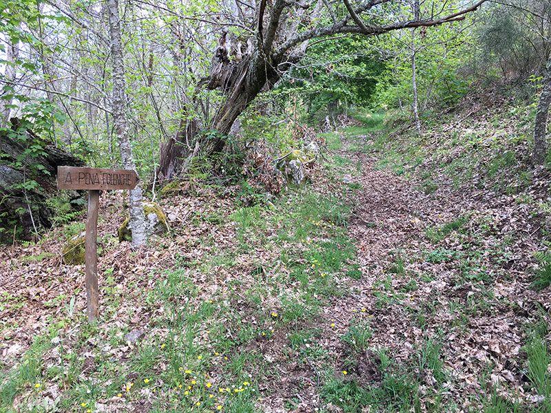 Ruta de senderismo dos sequeiros Trives Ourense - Señal de retorno