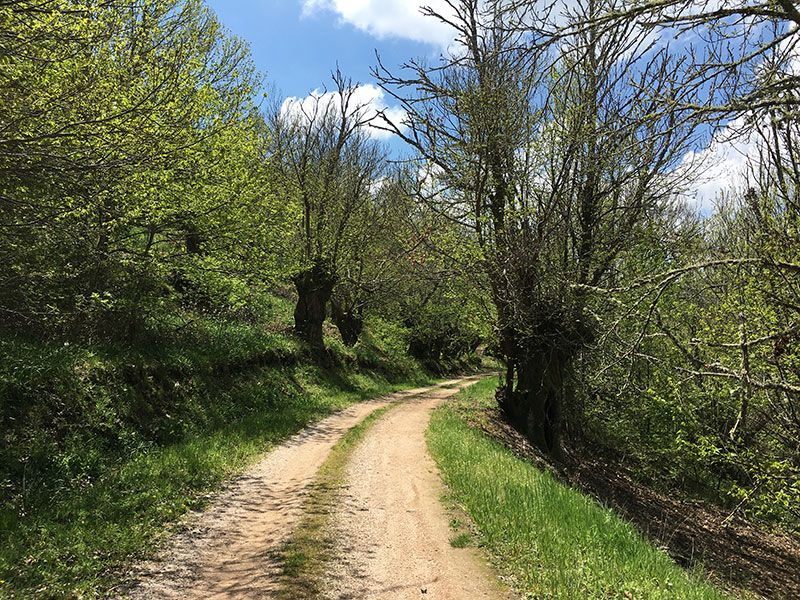 Ruta de senderismo dos sequeiros Trives Ourense - Soutos de castaños