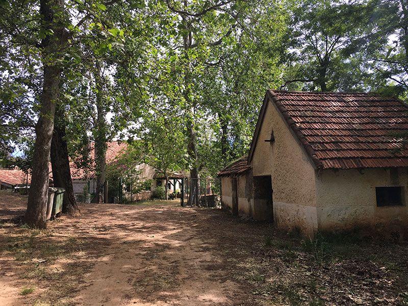 Ruta de senderismo Las Acebeas - Navalperal - Casa Forestal