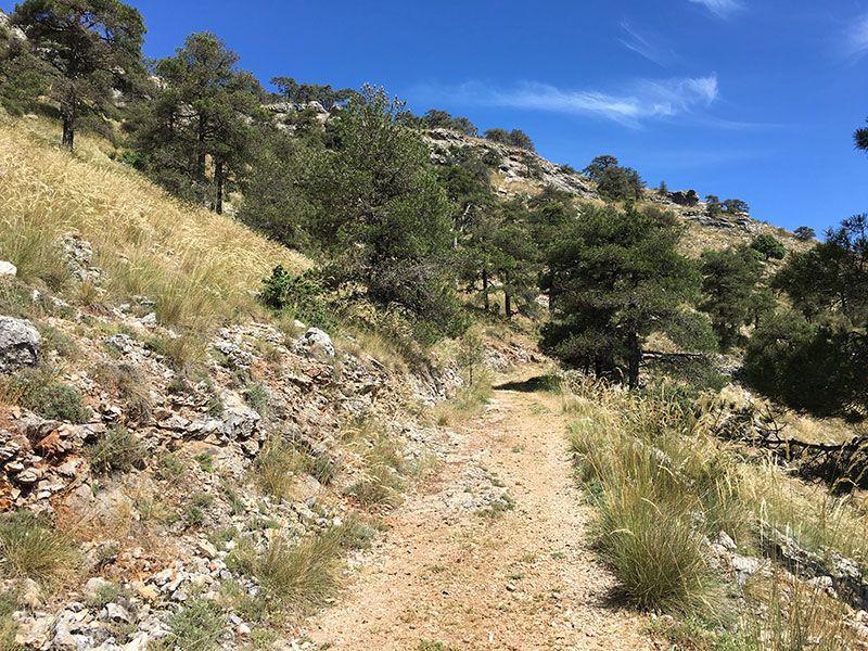 Ruta de senderismo Las Acebeas - Navalperal - Parte del trayecto sin apenas vegetación