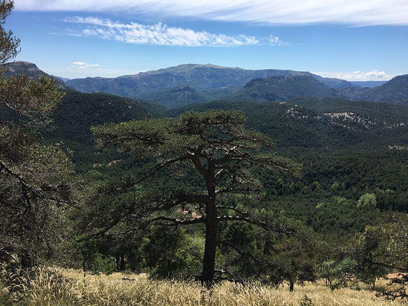 Ruta de senderismo Las Acebeas - Navalperal - Más vistas impresinantes ...
