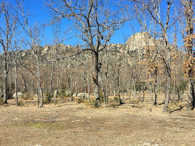 Ruta de senderismo Usos y Oficios Tradicionales - La Cabrera - Madrid - Vistas