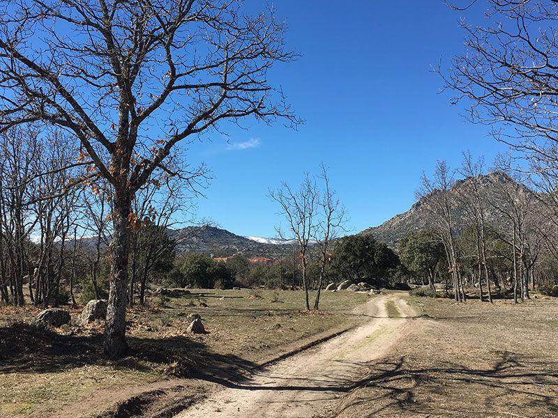 Ruta de senderismo Usos y Oficios Tradicionales - La Cabrera - Madrid - Llegamos de nuevo a La Cabera