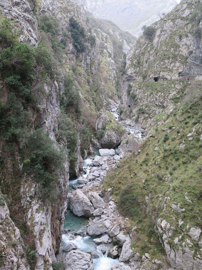 Las paredes de los Picos de Europa arropan el río Cares - Ruta del Cares