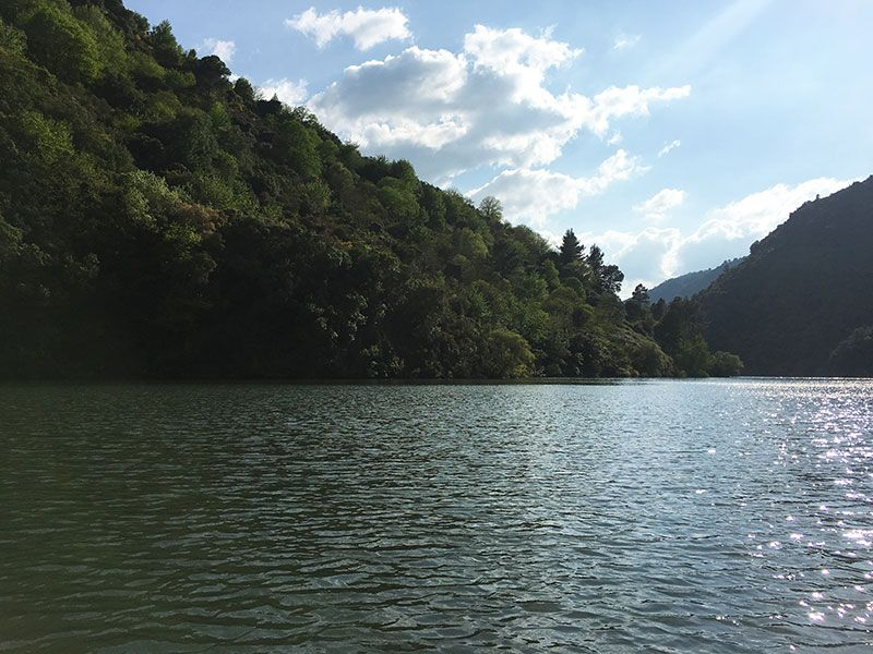 Ruta en barco por el Sil - Ambiente relajado
