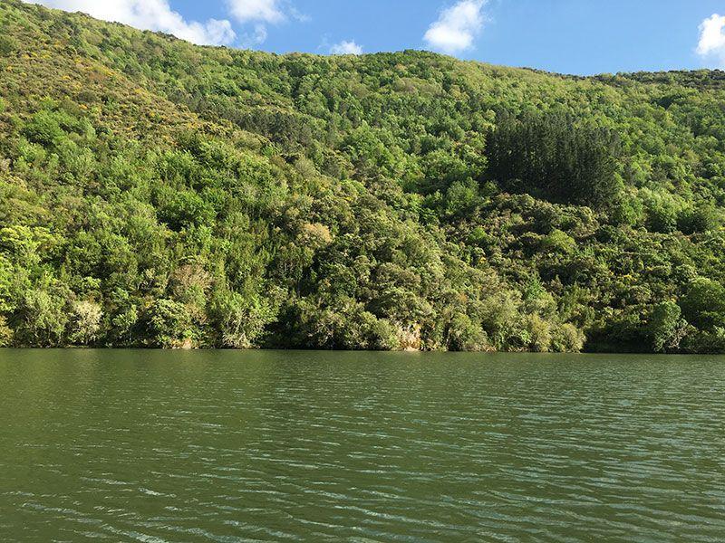 Ruta en barco por el Sil - Ladera de Lugo