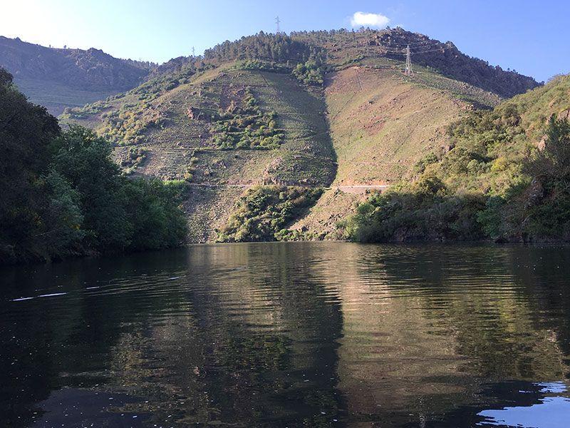 Ruta en barco por el Sil - Viñedos de la Ribeira Sacra