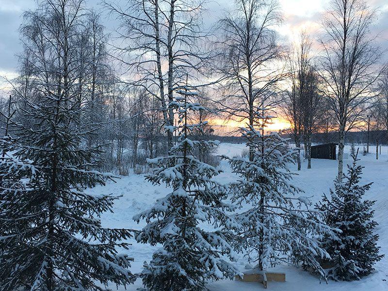 Un día inmersas en Laponia Finlandesa - Los paisajes eran increíbles