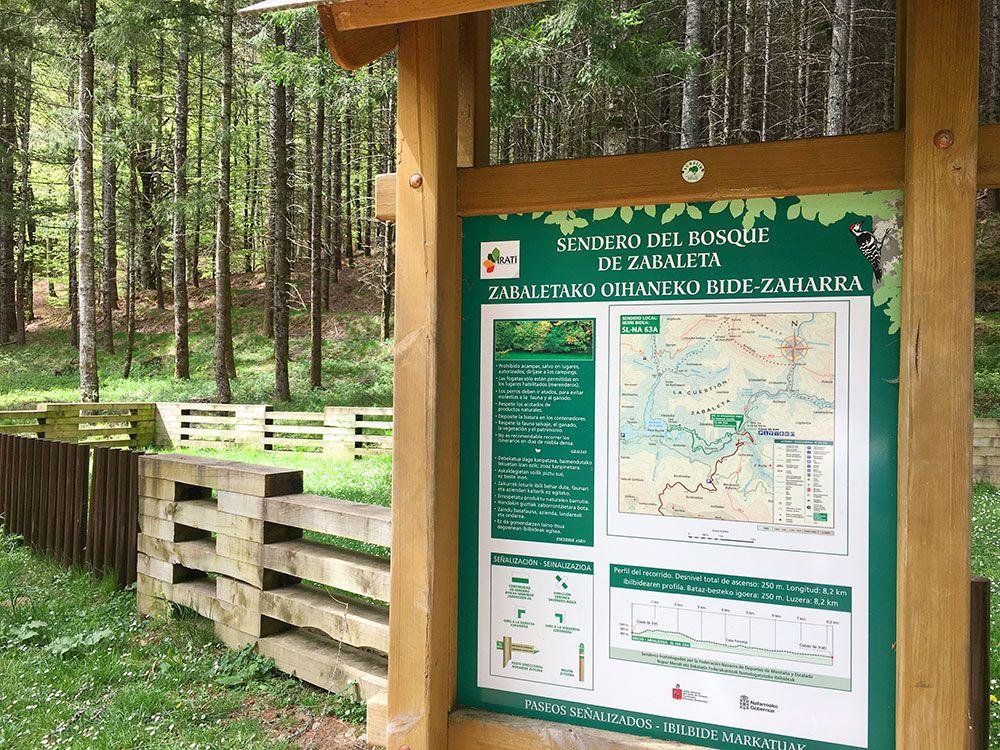 Selva de Irati - Senda del Bosque de Zabaleta
