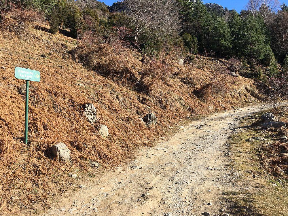 Subida a Los Llanos de La Larri - Senderismo La Pineta - Pista