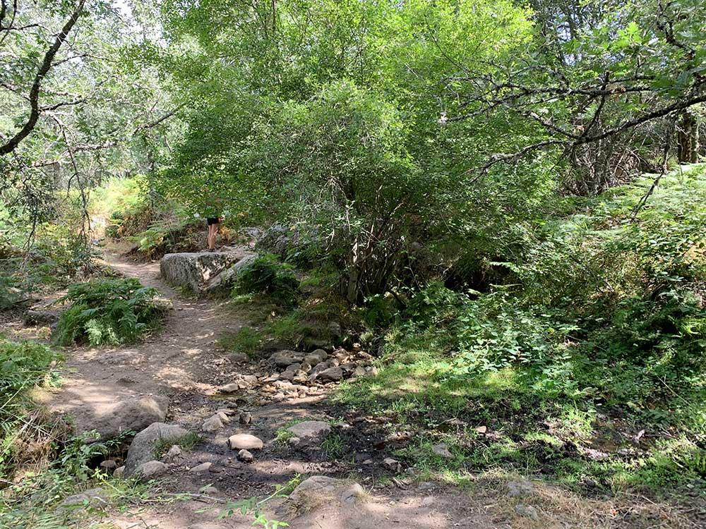 Arroyo de la Fuente del Infante