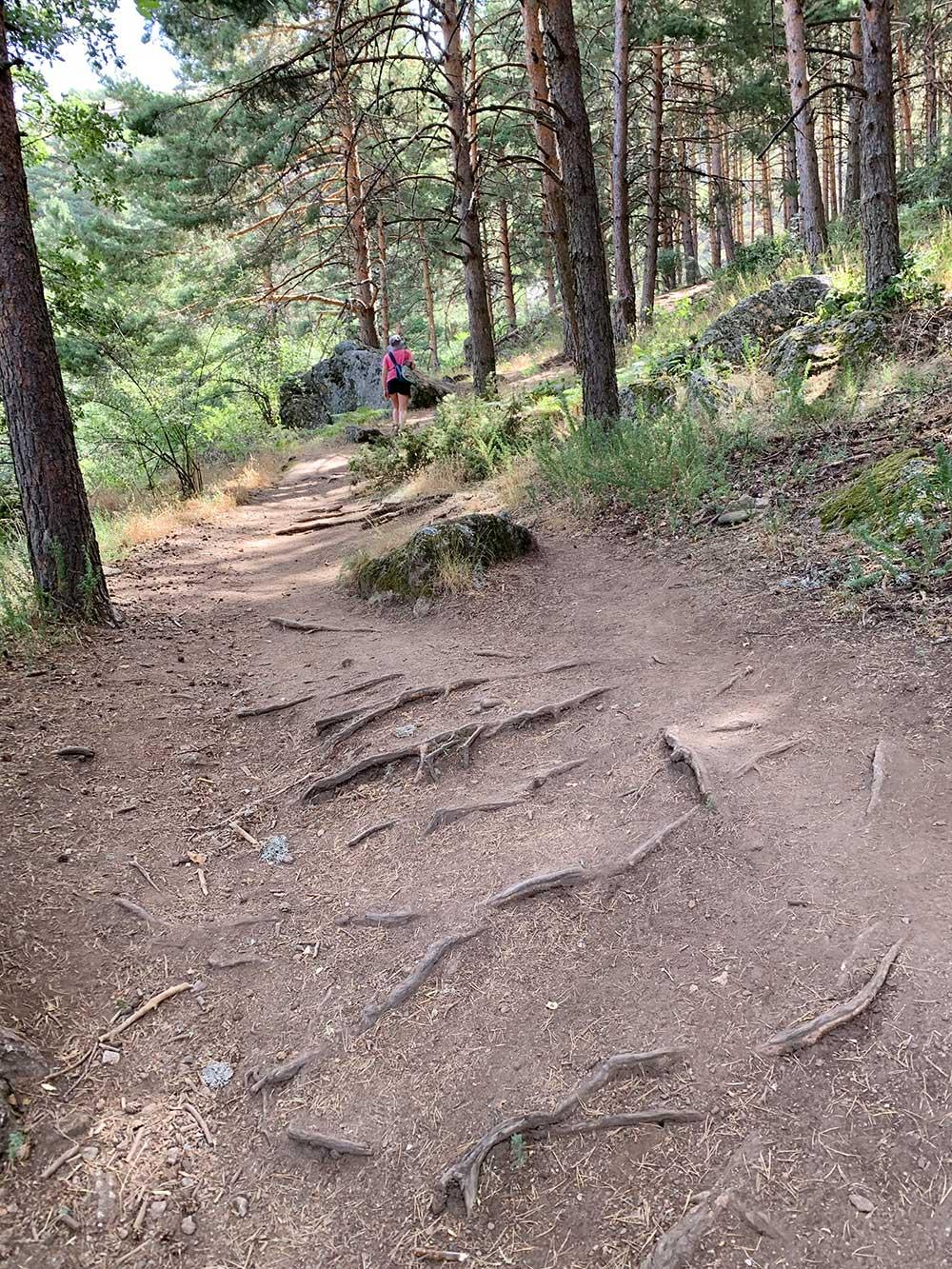 Subida a la Cascada del Chorro Grande de La Granja - Tramo final