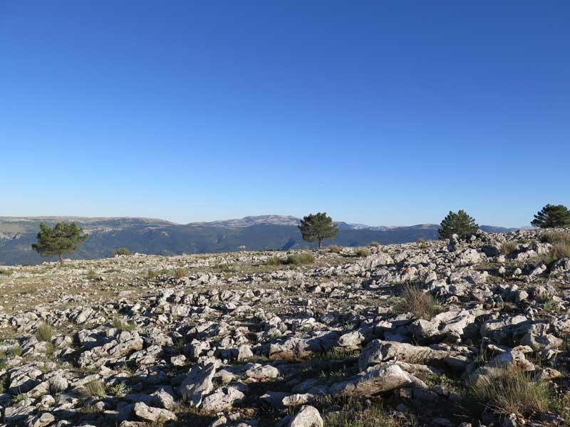 Terreno pedregoso en la cima de la Piedra del Cambrón