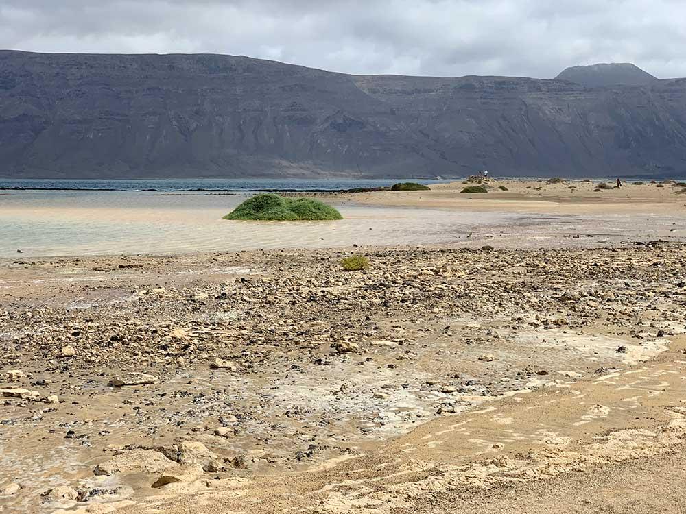 Paisajes de la Bahía del Salado