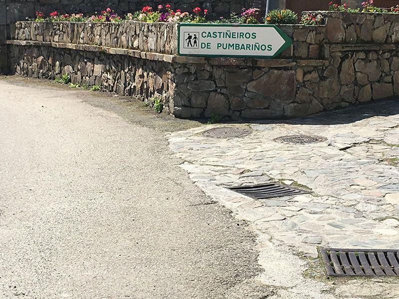Villa medieval de Manzaneda - Trives - Castieñiro de Pumbariños