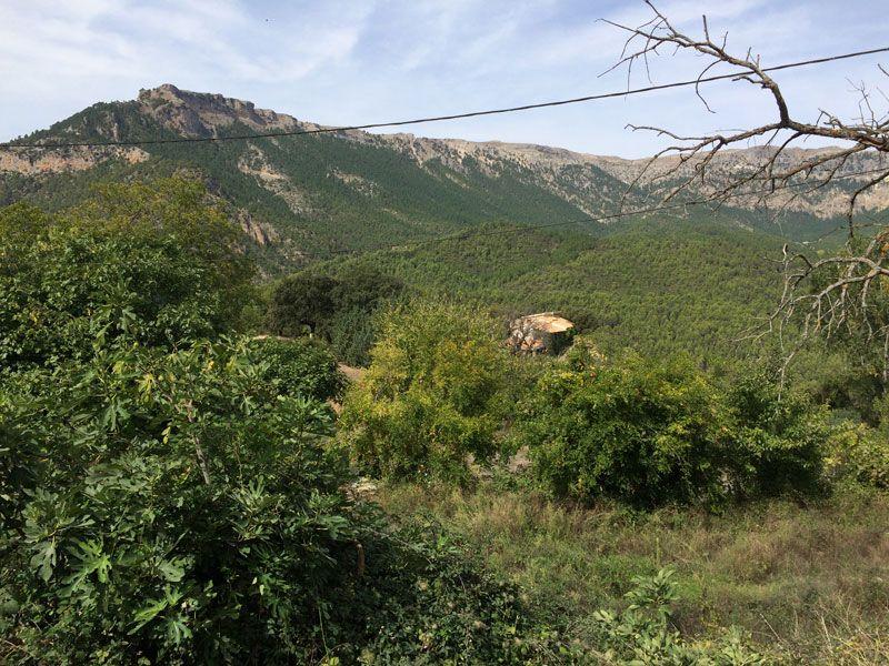 Yeste turismo rural - Subida a Las Fresnedas, vista de los Calares del Mundo